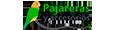 pajarerasyaccesorios.com